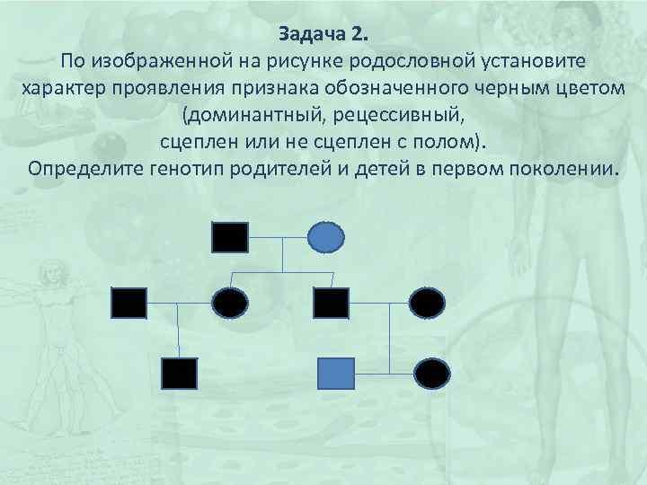 Задача 2. По изображенной на рисунке родословной установите характер проявления признака обозначенного черным цветом