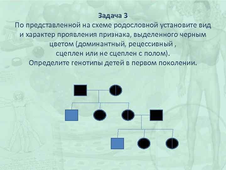 Задача 3 По представленной на схеме родословной установите вид и характер проявления признака, выделенного