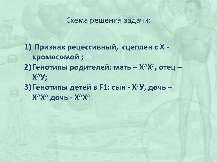 Схема решения задачи: 1) Признак рецессивный, сцеплен с Х - хромосомой ; 2) Генотипы