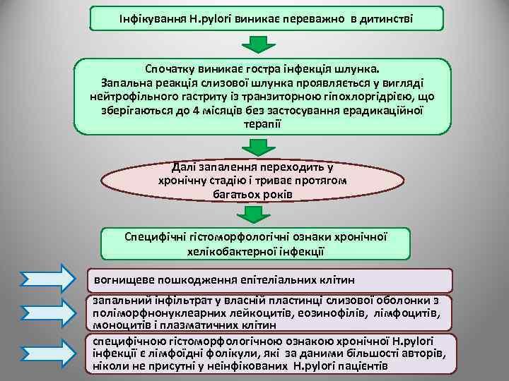 Інфікування H. pylori виникає переважно в дитинстві Спочатку виникає гостра інфекція шлунка. Запальна реакція