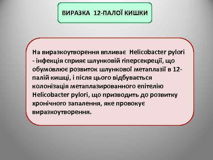 ВИРАЗКА 12 -ПАЛОЇ КИШКИ На виразкоутворення впливає Helicobacter pylori - інфекція сприяє шлунковій гіперсекреції,