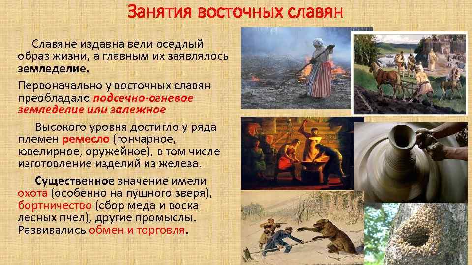 Занятия восточных славян Славяне издавна вели оседлый образ жизни, а главным их заявлялось земледелие.