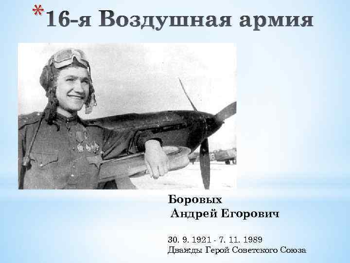 * 16 -я Воздушная армия Боровых Андрей Егорович 30. 9. 1921 - 7. 11.