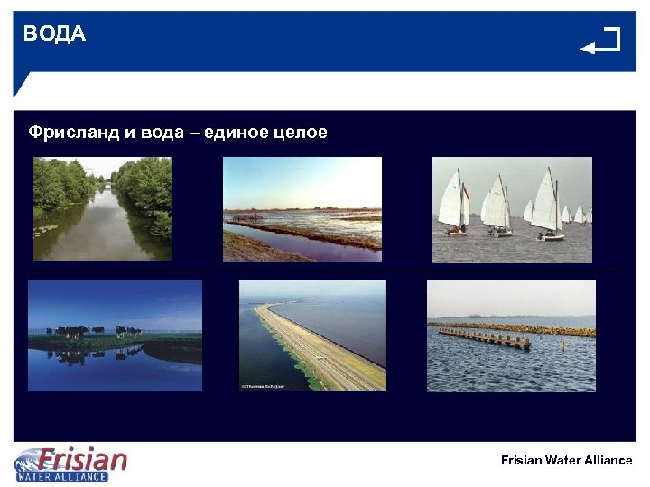 ВОДА Фрисланд и вода – единое целое Frisian Water Alliance