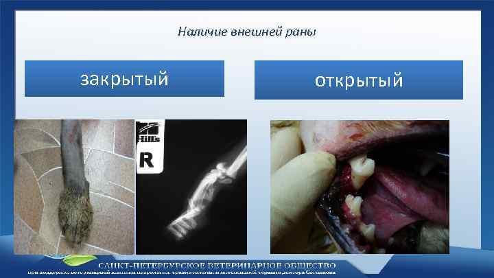 Наличие внешней раны закрытый открытый