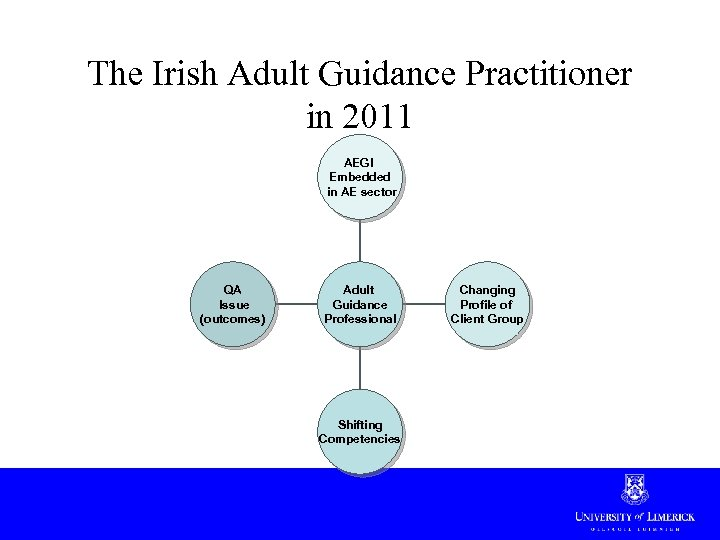 The Irish Adult Guidance Practitioner in 2011 AEGI Embedded in AE sector QA Issue