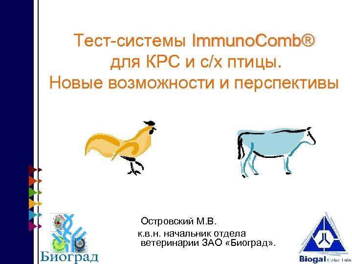 Тест-системы Immuno. Comb® для КРС и с/х птицы. Новые возможности и перспективы Островский М.