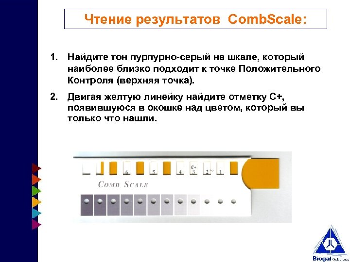 Чтение результатов Comb. Scale: 1. Найдите тон пурпурно-серый на шкале, который наиболее близко подходит