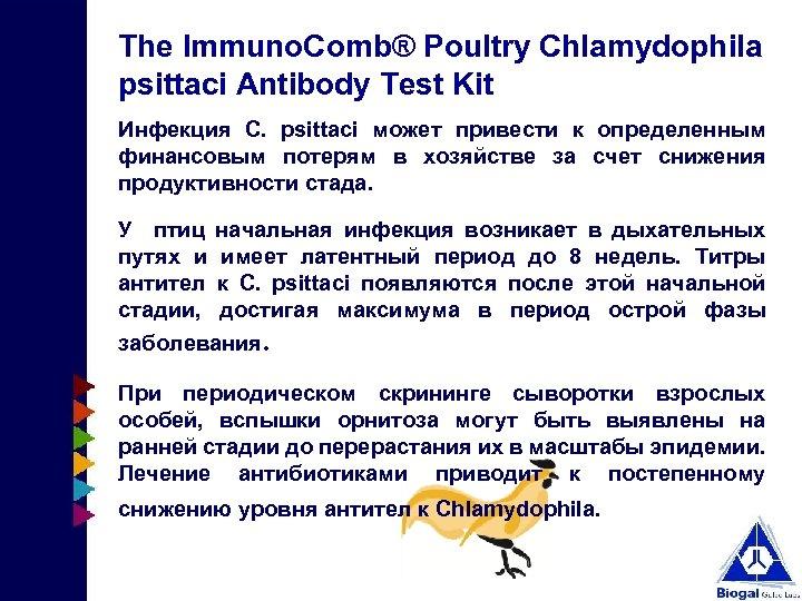 The Immuno. Comb® Poultry Chlamydophila psittaci Antibody Test Kit Инфекция С. psittaci может привести