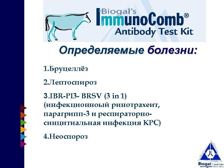 Определяемые болезни: 1. Бруцеллёз 2. Лептоспироз 3. IBR-PI 3 - BRSV (3 in 1)