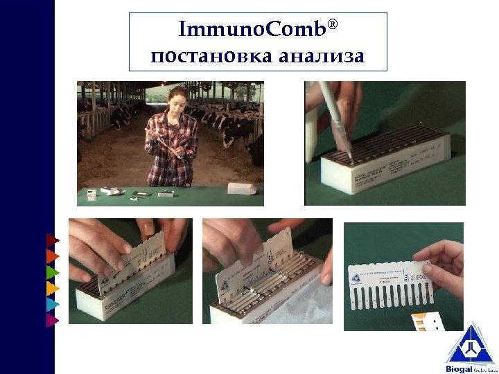Immuno. Comb® постановка анализа