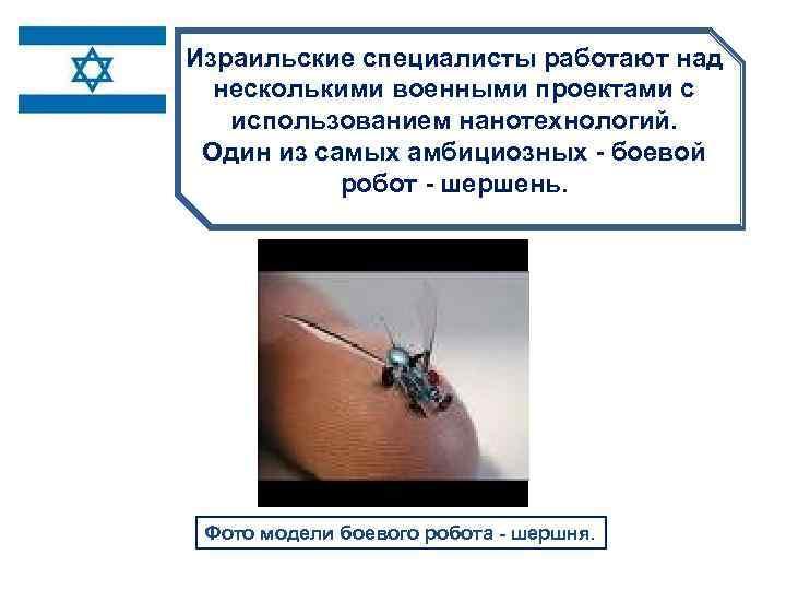 Израильские специалисты работают над несколькими военными проектами с использованием нанотехнологий. 1 нм. . .