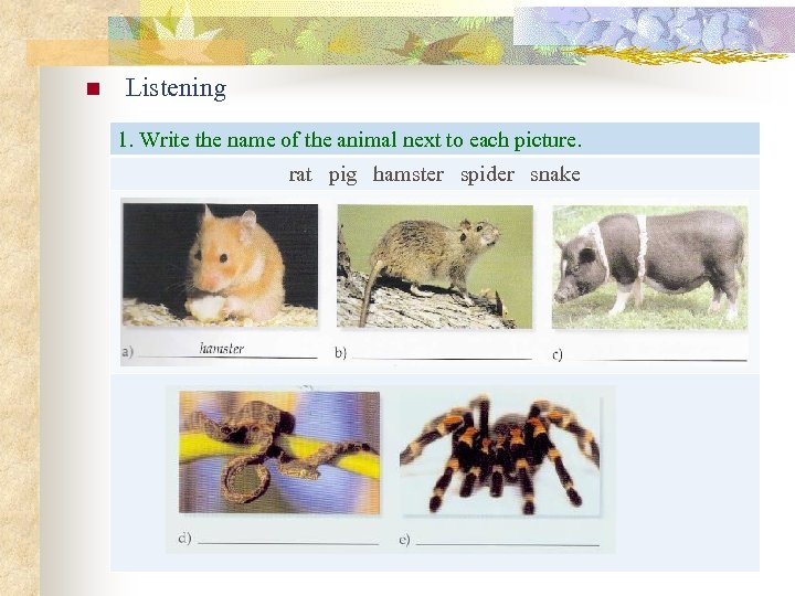 n Listening 1. Write the name of the animal next to each picture. rat