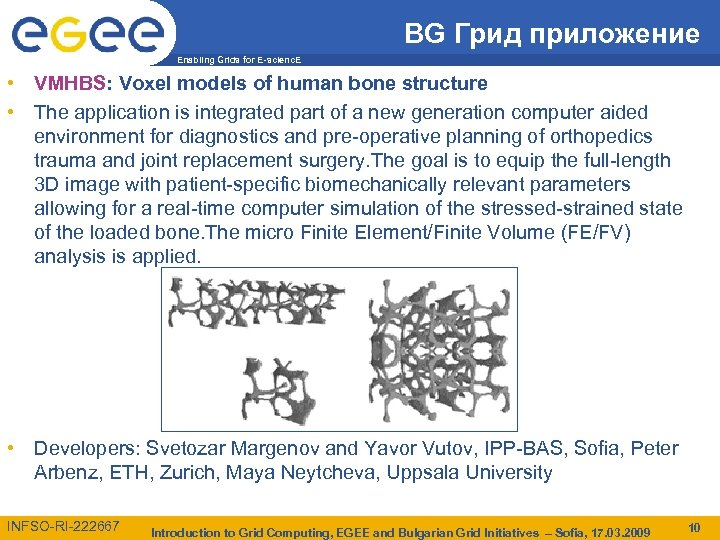 BG Грид приложение Enabling Grids for E-scienc. E • VMHBS: Voxel models of human