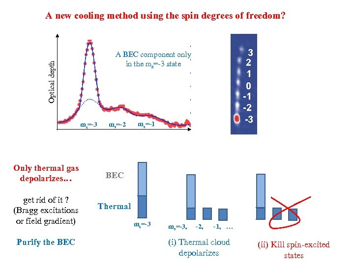 A new cooling method using the spin degrees of freedom? Optical depth A BEC