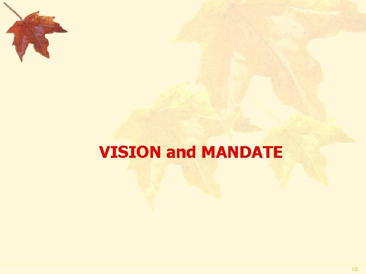 VISION and MANDATE 10