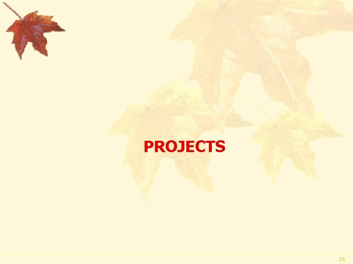 PROJECTS 25