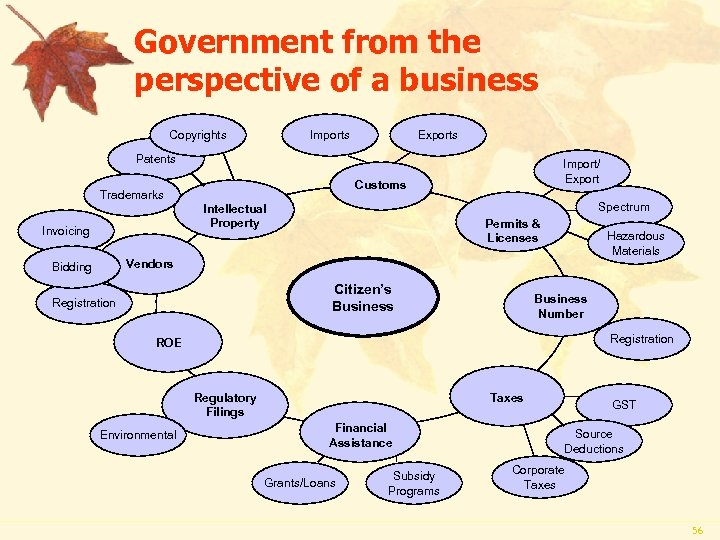 Government from the perspective of a business Copyrights Imports Exports Patents Customs Trademarks Spectrum