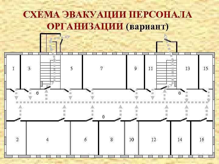 СХЕМА ЭВАКУАЦИИ ПЕРСОНАЛА ОРГАНИЗАЦИИ (вариант) 1 3 2 5 4 7 6 9 8