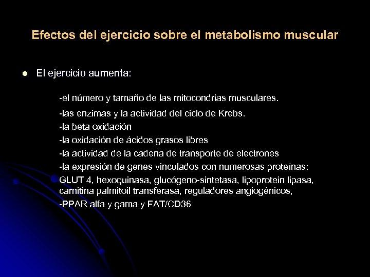 Efectos del ejercicio sobre el metabolismo muscular l El ejercicio aumenta: -el número y