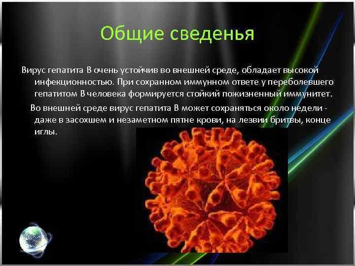 Общие сведенья Вирус гепатита В очень устойчив во внешней среде, обладает высокой инфекционностью. При
