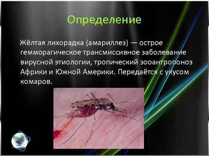 Определение Жёлтая лихорадка (амариллез) — острое гемморагическое трансмиссивное заболевание вирусной этиологии, тропический зооантропоноз Африки