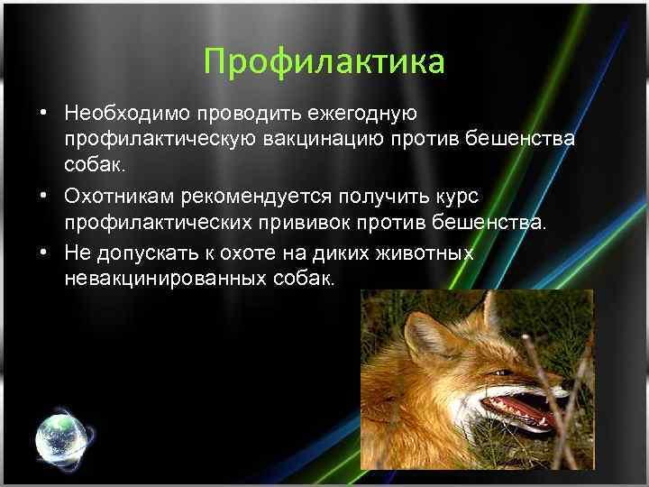Профилактика • Необходимо проводить ежегодную профилактическую вакцинацию против бешенства собак. • Охотникам рекомендуется получить