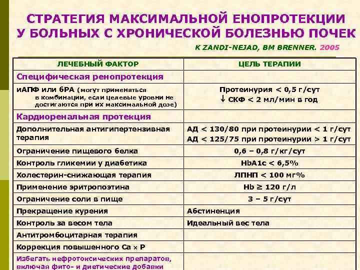 СТРАТЕГИЯ МАКСИМАЛЬНОЙ ЕНОПРОТЕКЦИИ У БОЛЬНЫХ С ХРОНИЧЕСКОЙ БОЛЕЗНЬЮ ПОЧЕК K ZANDI-NEJAD, BM BRENNER. 2005