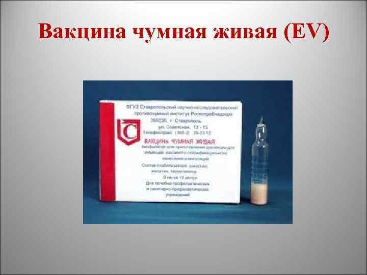 Вакцина моровой от гипертонии