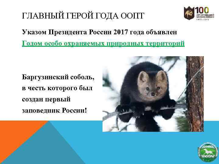 ГЛАВНЫЙ ГЕРОЙ ГОДА ООПТ Указом Президента России 2017 года объявлен Годом особо охраняемых природных
