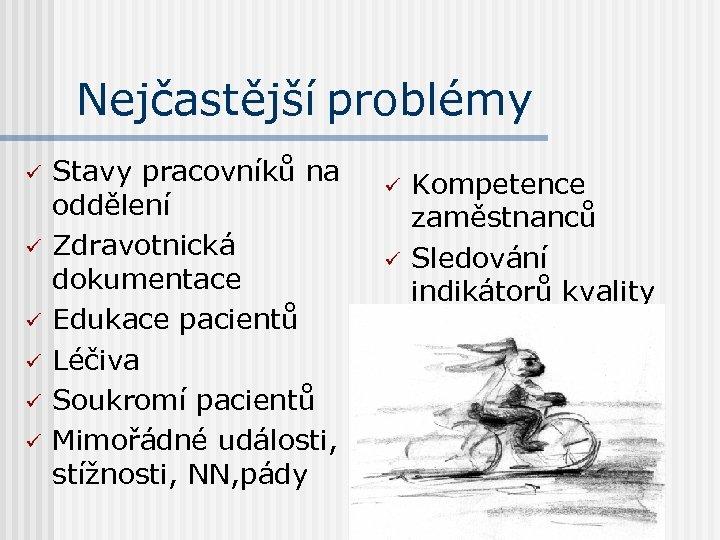 Nejčastější problémy ü ü ü Stavy pracovníků na oddělení Zdravotnická dokumentace Edukace pacientů Léčiva