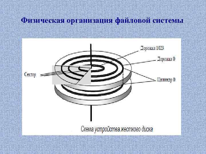 Физическая организация файловой системы