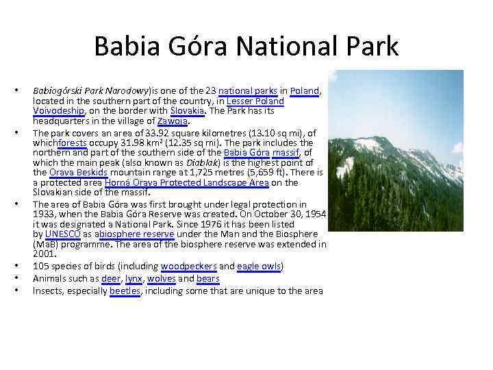 Babia Góra National Park • • • Babiogórski Park Narodowy)is one of the 23