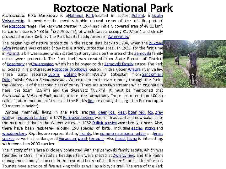 Roztocze National Park Roztoczański Park Narodowy is a. National Park located in eastern Poland,