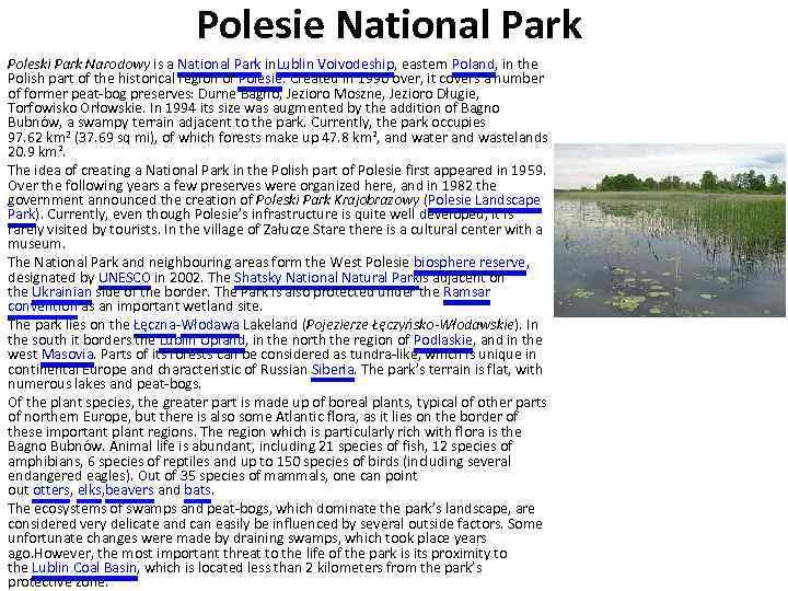 Polesie National Park Poleski Park Narodowy is a National Park in. Lublin Voivodeship, eastern