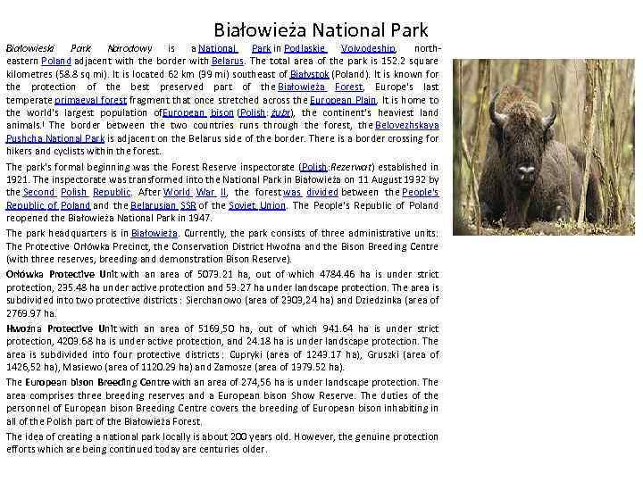 Białowieża National Park Białowieski Park Narodowy is a National Park in Podlaskie Voivodeship, northeastern