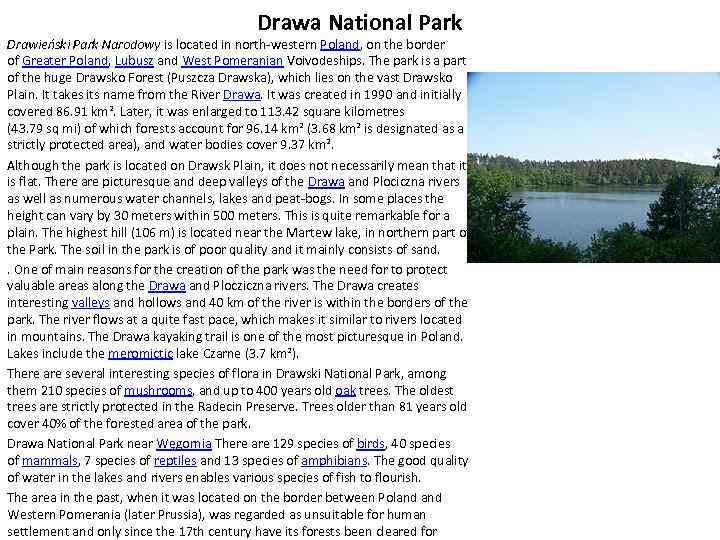 Drawa National Park Drawieński Park Narodowy is located in north-western Poland, on the border