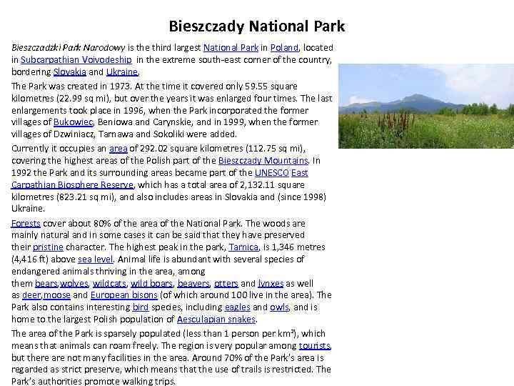 Bieszczady National Park Bieszczadzki Park Narodowy is the third largest National Park in Poland,