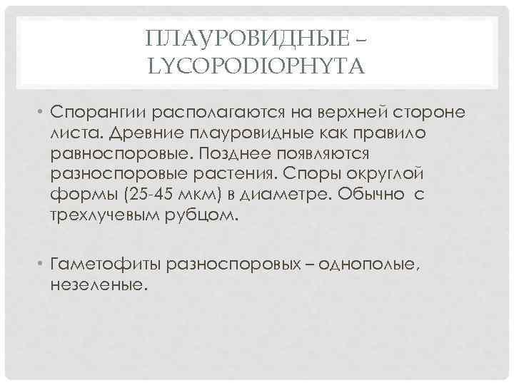 ПЛАУРОВИДНЫЕ – LYCOPODIOPHYTA • Спорангии располагаются на верхней стороне листа. Древние плауровидные как правило