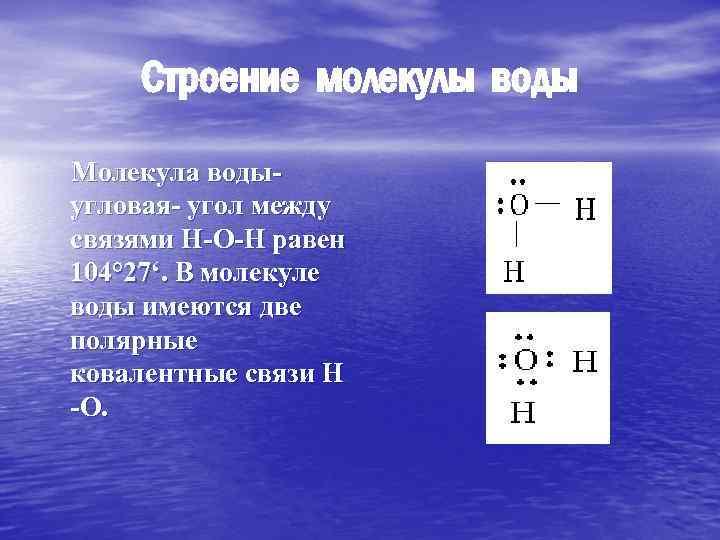 Строение молекулы воды Молекула воды угловая- угол между связями Н-О-Н равен 104° 27'. В