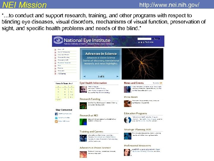 """NEI Mission http: //www. nei. nih. gov/ """"…to conduct and support research, training, and"""