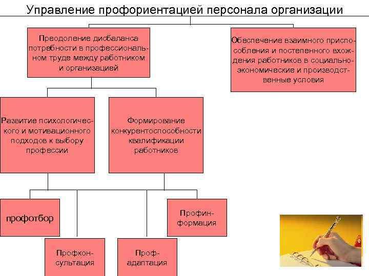 Управление профориентацией персонала организации Преодоление дисбаланса потребности в профессиональном труде между работником и организацией