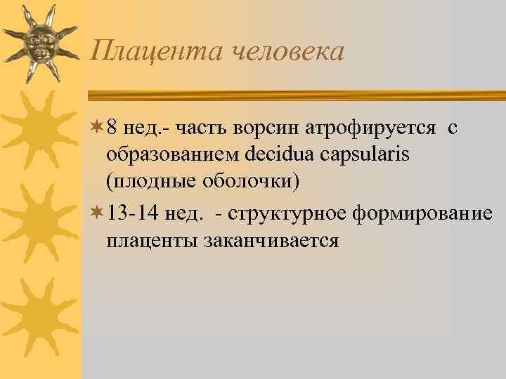 Плацента человека ¬ 8 нед. - часть ворсин атрофируется с образованием decidua capsularis (плодные