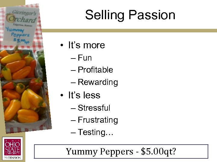 Selling Passion • It's more – Fun – Profitable – Rewarding • It's less