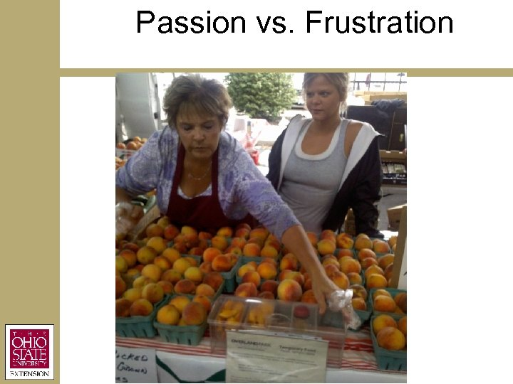 Passion vs. Frustration
