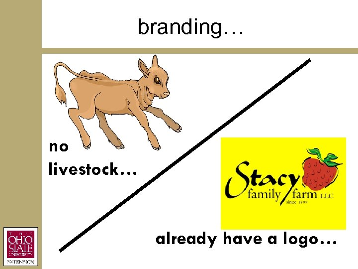 branding… no livestock… already have a logo…