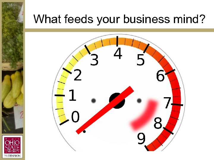 What feeds your business mind?
