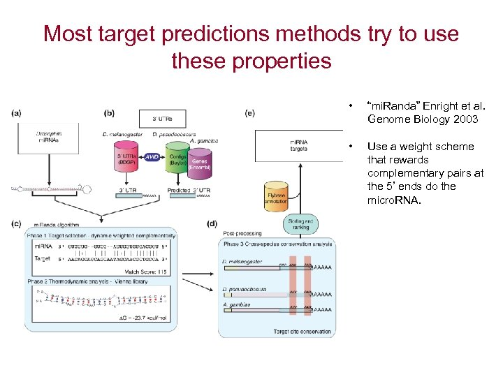 """Most target predictions methods try to use these properties • """"mi. Randa"""" Enright et"""