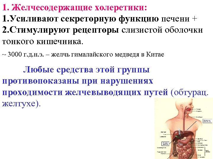 1. Желчесодержащие холеретики: 1. Усиливают секреторную функцию печени + 2. Стимулируют рецепторы слизистой оболочки
