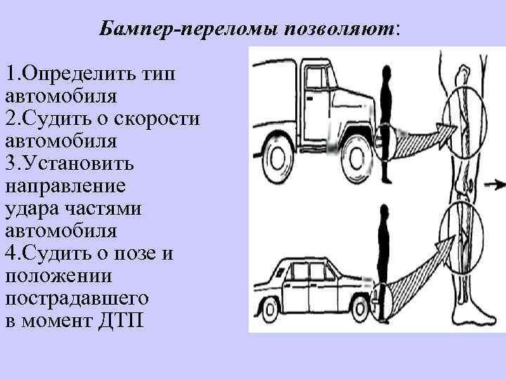 Бампер-переломы позволяют: 1. Определить тип автомобиля 2. Судить о скорости автомобиля 3. Установить направление